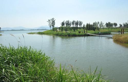 苏州太湖湿地公园一隅
