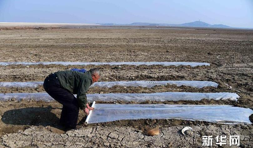 山东旱情持续 410多座水库干涸260多条河道断流(图/视频)