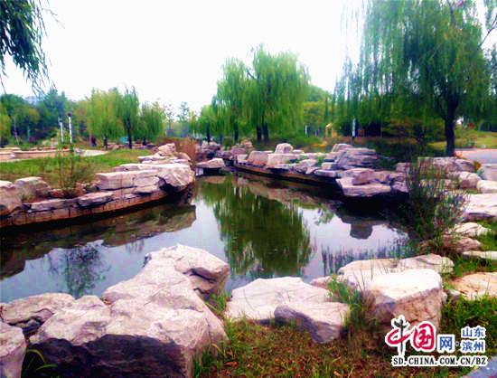 滨州植物园景色一角