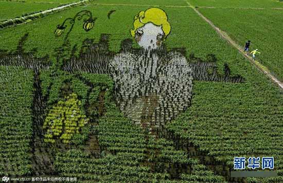 稻田画先设计好要表现的图形,利用先进的3d技术和透视技术,用矢量法定