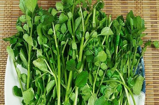 圖據網路 豆瓣菜   中國網山東泰安7月29日訊(記者李妍)炎熱的夏天一到,就到了綠葉蔬菜的銷售旺季。肉類雖好吃,在高溫悶熱的夏天食用不免會讓人覺得油膩。綠葉蔬菜中含有豐富的維生素C、葉酸等物質,在營養流失較快的夏季食用,可以及時補充身體所需的營養。營養專家稱,很多綠葉蔬菜不僅清口、美味,還具有養生功能,下面就為大家列舉幾種好吃又養生的綠葉蔬菜。   豆瓣菜   豆瓣菜又稱西洋菜或水田芥。一把豆瓣菜就能滿足人體每日對維生素K的推薦攝入量。經常食用豆瓣菜可以減輕白細胞所受到的損傷,減少患癌症的風險,使
