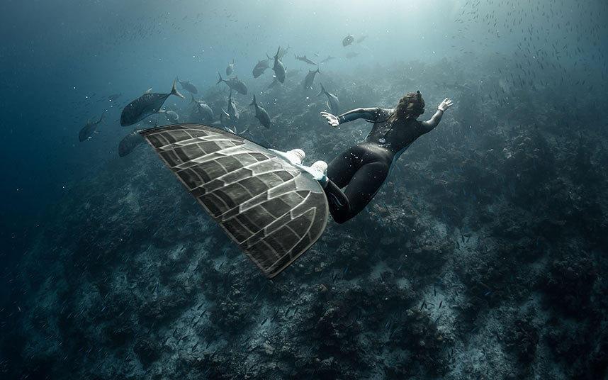法国深海潜水员与海底生物共舞