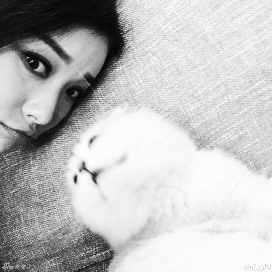 倪妮晒素颜照 亲吻爱猫十分宠溺