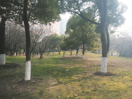 武汉中山公园地下停车场工程或重新启动
