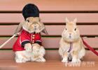 制服兔子造型多变似型男
