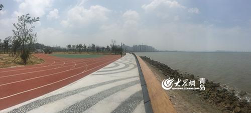 青岛胶州湾变身滨海公园