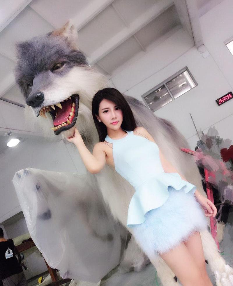 两吨重巨狼现身chinajoy 最美女硕士夏小薇上演美女与