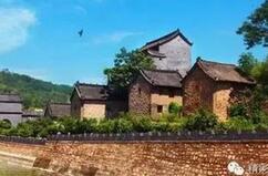 国内第一个古植物主题地质公园在河南建成(图)