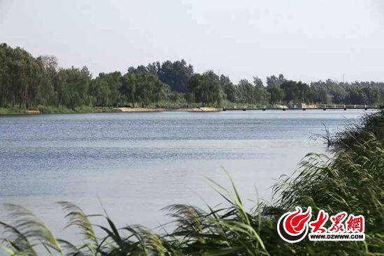日照再添一处省级湿地公园 为莒县西湖烟雨湿地公园