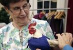 老人给鸡织毛衣 帮鸡保暖下蛋多(组图)