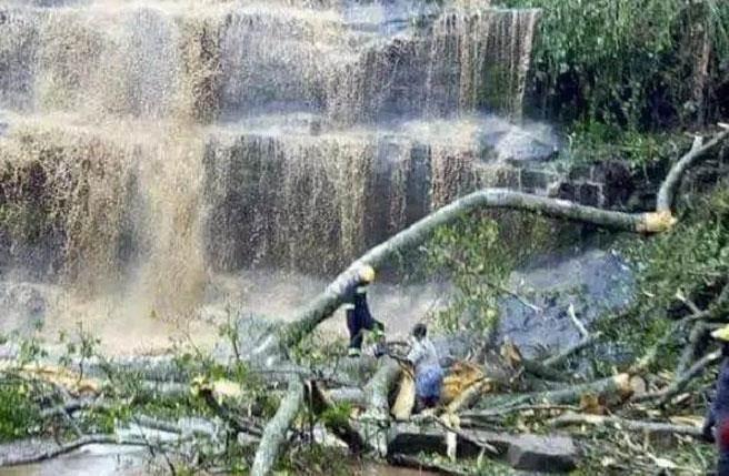 加纳瀑布景点大树遭雷击倒塌 致游客至少20死11伤