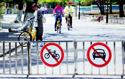 青岛八大关景区内共享单车频闹悬