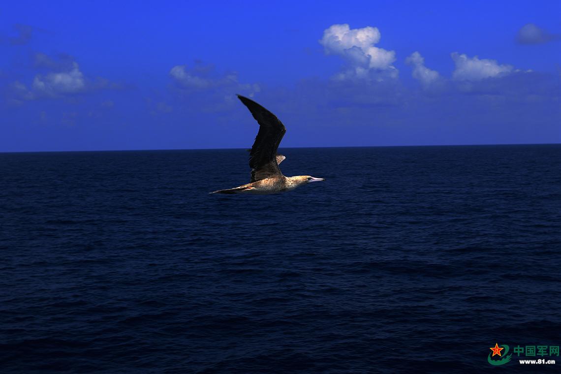 祖国南沙群岛的美丽画卷