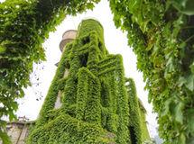 """楼体穿绿装变""""童话王国"""""""