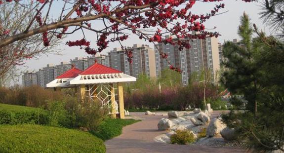 垦利区开展国家生态园林城市创建 提升绿地服务功能