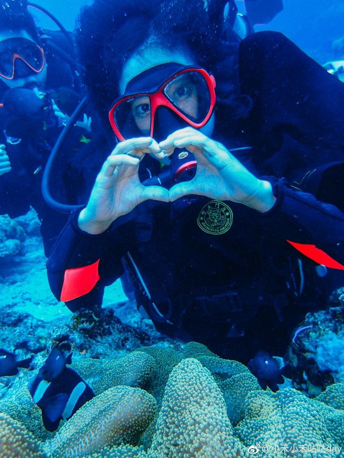 壁纸 海底 海底世界 海洋馆 水族馆 桌面 690_920 竖版 竖屏 手机