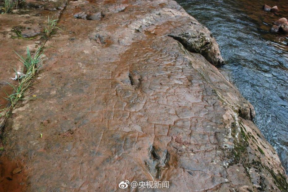 """河滩出现""""脚印"""" 竟是一亿年前恐龙足迹"""