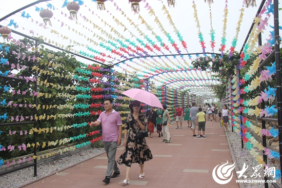 日照沁园春风景区8月5日将开展葡萄采摘节活动(组图)