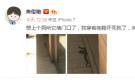 """焦俊艳片场遇""""夜华"""" 网友凑热闹""""搞事情"""""""