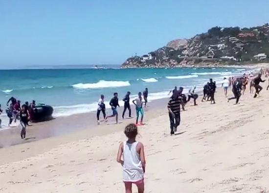 海边戏水的游客被吓得目瞪口呆