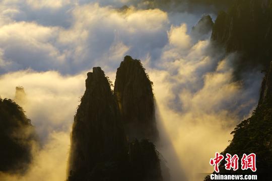 9月7日傍晚,黄山雨后放晴,首现入秋以来的云海景观。 杨绯 摄