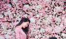 李晨求婚范冰冰 前女友张馨予晒罂粟花意味深长(组图)