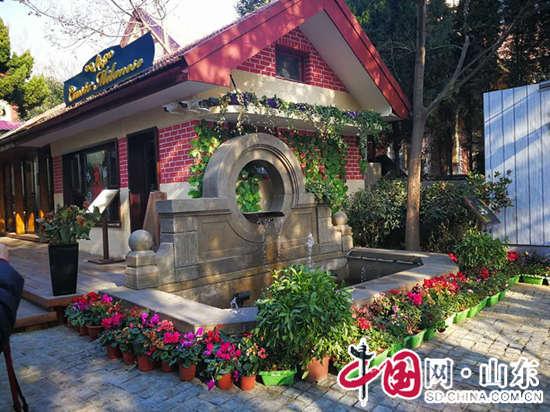 青岛百年老房子焕发新活力演绎新时尚